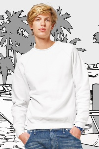 Sweater SG Raglan Men's basic